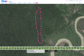 Mapping forest cover at 2 cm pixel resolution