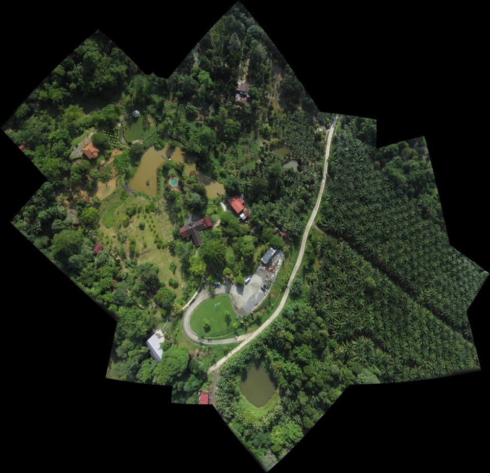 This is a composite mosaic of 14 drone images over Sepilok.
