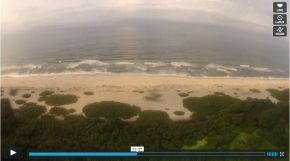 Conservation Drones in Gabon