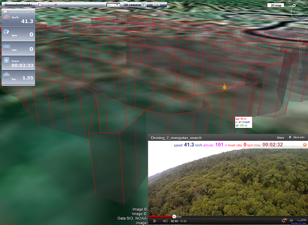Google Earth-synchronized animation and video of our orangutan nest hunt in Sumatra.