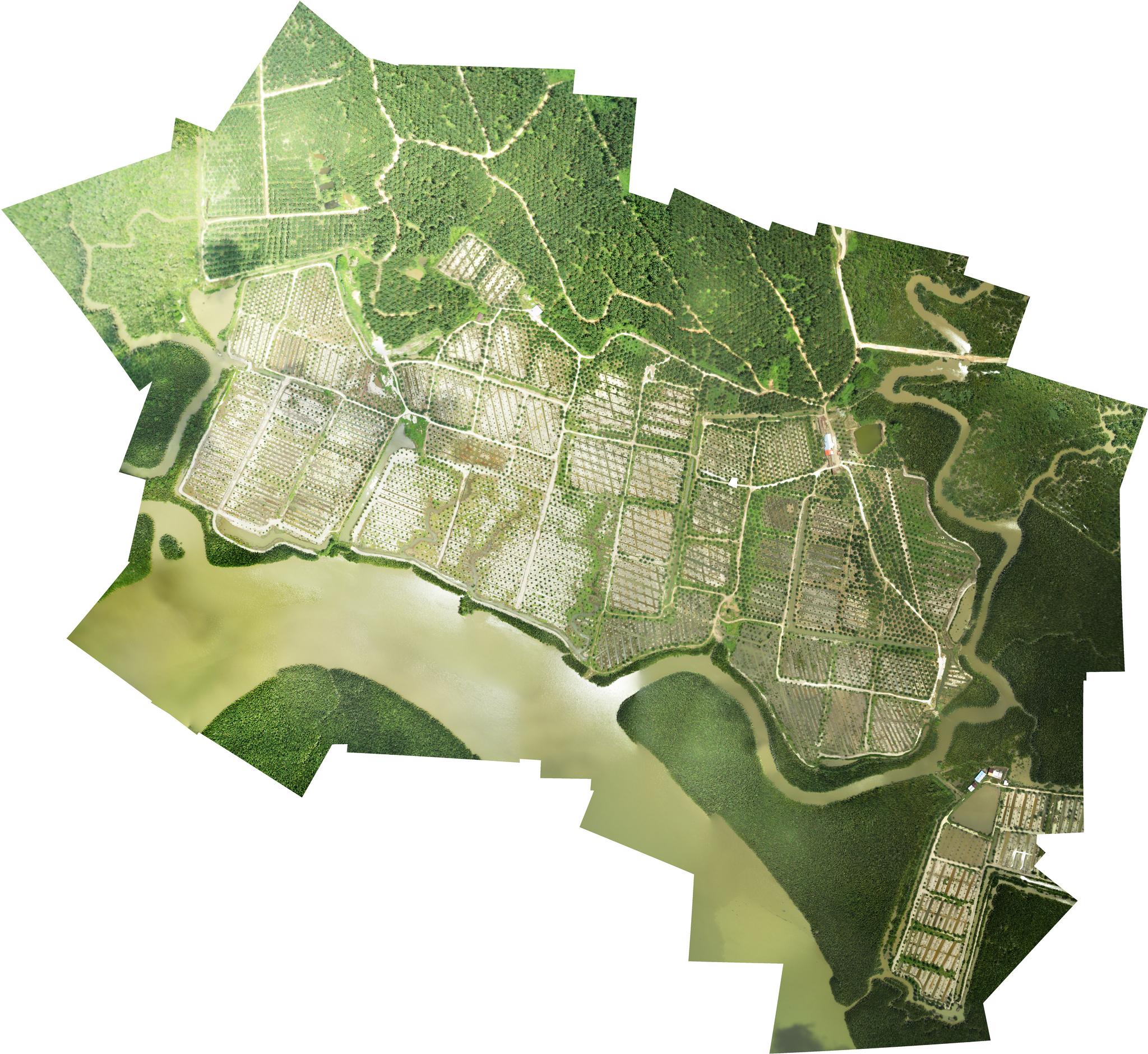 Conservation Drones - Google drone maps