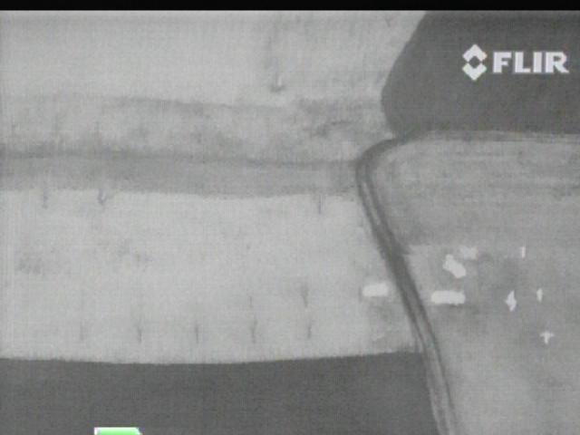 FLIR image at 100 m above ground.