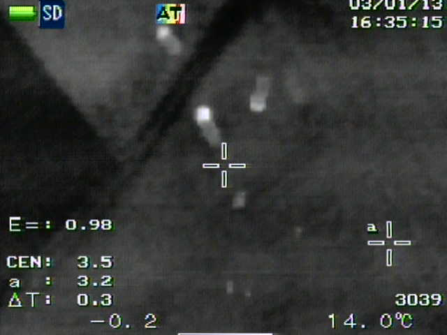 NEC image at 100 m above ground.